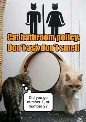 Cat bathroom policy: Don't ask don't smell
