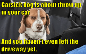Carsick dog is about throw up in your car  And you haven't even left the driveway yet.