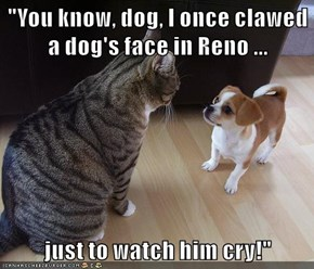 """You know, dog, I once clawed a dog's face in Reno ...  just to watch him cry!"""