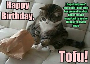 Happy Birthday, Tofu!