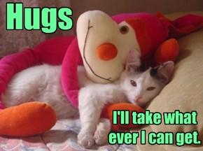 Hugs, I'll take what ever I can get.