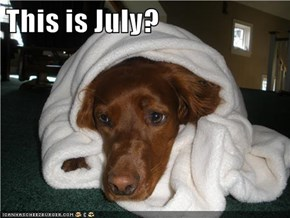 This is July?