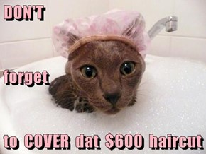 DON'T forget to  COVER  dat  $600  haircut