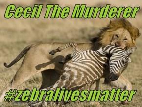 Cecil The Murderer   #zebralivesmatter