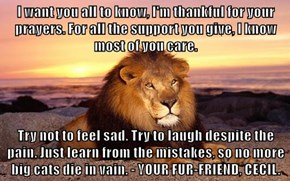 I want you all to know, I'm thankful for your prayers. For all the support you give, I know most of you care.  Try not to feel sad. Try to laugh despite the pain. Just learn from the mistakes, so no more big cats die in vain. - YOUR FUR-FRIEND, CECIL.