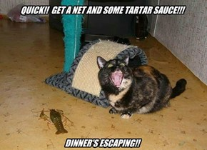 QUICK!!  GET A NET AND SOME TARTAR SAUCE!!!            DINNER'S ESCAPING!!