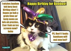 Happy Birfday, booboo22.. I haz dressed up in mai finest hat to wish yu teh bestest Birfday!