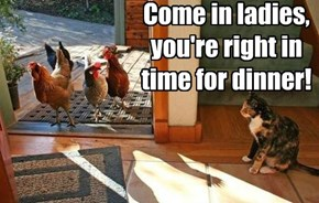 Come in ladies, you're right in time for dinner!
