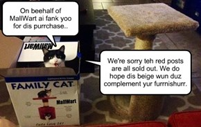 Only Unopened Family Cats May Bee Returned...