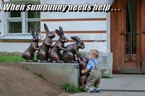 When sumbunny needs help . . .