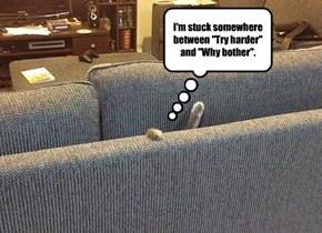I Hazza Stuck