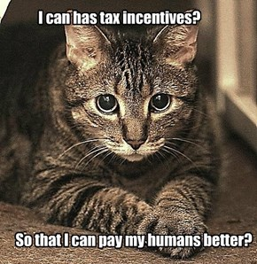 Capitalist fat Cat is Concerned About Income Inequality
