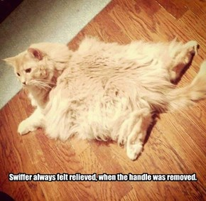 Swiffer always felt relieved, when the handle was removed.