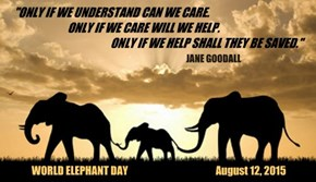 WORLD ELEPHANT DAY                                            August 12, 2015