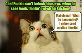 Kamp 2015: Teh mystery ob teh disappearing foods! Chef Punkin iz shocked!