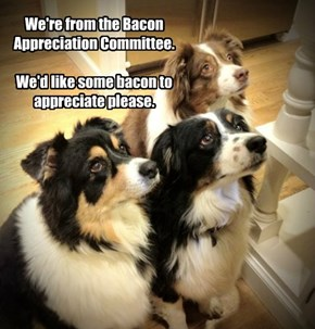 We're from the Bacon Appreciation Committee.  We'd like some bacon to appreciate please.