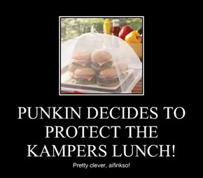 PUNKIN DECIDES TO PROTECT THE KAMPERS LUNCH!