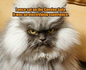 I once sat on the Comfee Sofa.  It was an electrifying experience.
