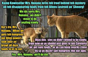 Kamp 2015: Teh mystery ob teh disappearing foods! After following teh trail ob food from Chef Punkin's kitchen to teh miscreants, Kamp Kownsellor Mrs. Nonono confronts teh culprits Lustroid an' Shmerg!