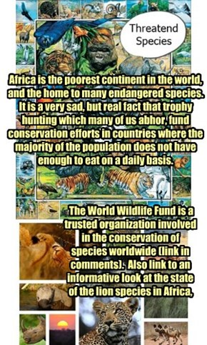 Want to end trophy hunting in Africa?  Donate to organizations supporting conservation and preservation.