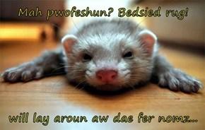 Mah pwofeshun? Bedsied rug!  will lay aroun aw dae fer nomz...