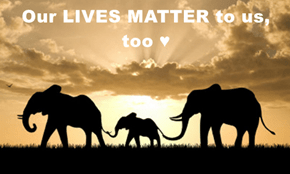 Our LIVES MATTER to us, too ♥