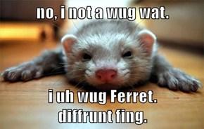 no, i not a wug wat.  i uh wug Ferret.                 diffrunt fing.