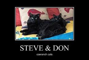 STEVE & DON