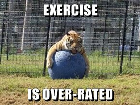 EXERCISE   IS OVER-RATED