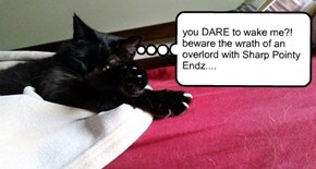 you DARE to wake me?! beware the wrath of an overlord with Sharp Pointy Endz....