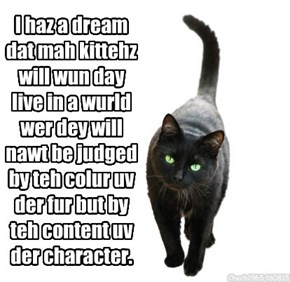 I haz a dream