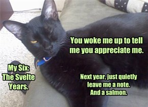 Black Cat Appreciation Day: 8/17/15