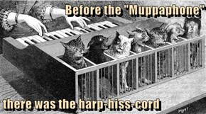 "Before the ""Muppaphone""  there was the harp-hiss-cord"