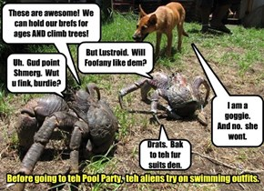 Although new to Kamp Kuppykakes.  Teh aliens have already figured out who the Supreme Being is.