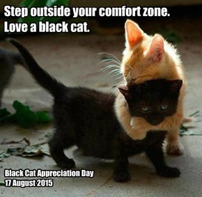 Step outside your comfort zone. Love a black cat.