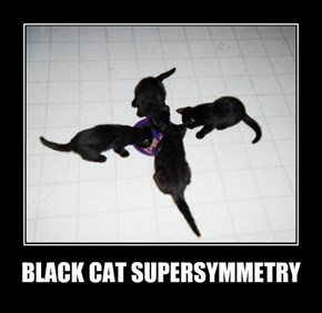BLACK CAT SUPERSYMMETRY