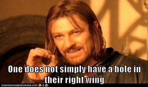 One does not simply have a hole in their right wing