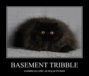 BASEMENT TRIBBLE
