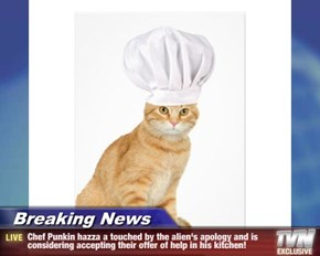 Breaking News - Chef Punkin hazza a touched by the alien's apology and is considering accepting their offer of help in his kitchen!