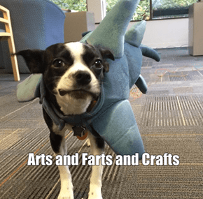 Arts and Barks and Crafts