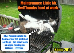 Kamp 2015: At Chef Punkin's rekwest, maintenance kittie Mr. AllThumbs gets teh grill reddy for teh highly anticipated Pool Partee..