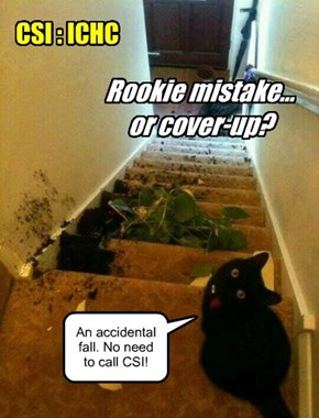 CSI : ICHC -- Rookie mistake... or cover-up?
