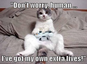 """""""Don't worry, human ...  I've got my own extra lives!"""""""