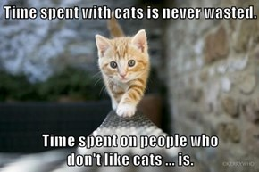 Time spent with cats is never wasted.  Time spent on people who                            don't like cats ... is.
