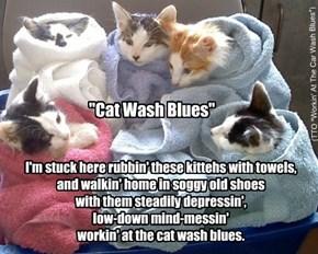 """Cat Wash Blues"" (TTO ""Workin' At The Car Wash Blues"")"