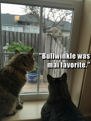 """""""Bullwinkle was                                                                              mai favorite."""""""