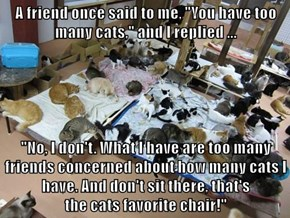 "A friend once said to me, ""You have too many cats,"" and I replied ...  ""No, I don't. What I have are too many friends concerned about how many cats I have. And don't sit there, that's                                  the cats favorite chair!"""