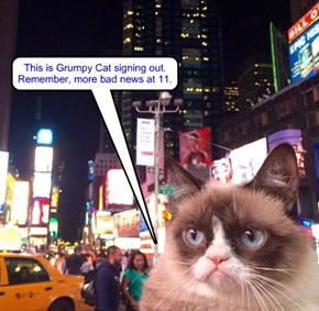 Start spreading the bad news: Grumpy Cat is in New York (18 August 2015)