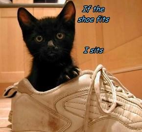 If the  shoe fits    I sits