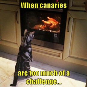 When canaries  are too much of a challenge...
